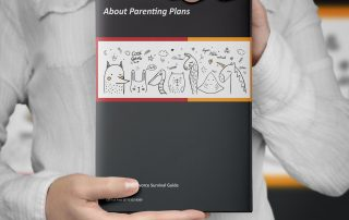 What is a DTSW - Family Harbour Parenting Plan