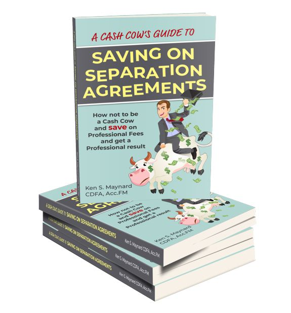 Ontario Separation Agreement Template Form and Top 10 How to Tips